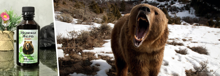 Препараты на основе медвежьей желчи