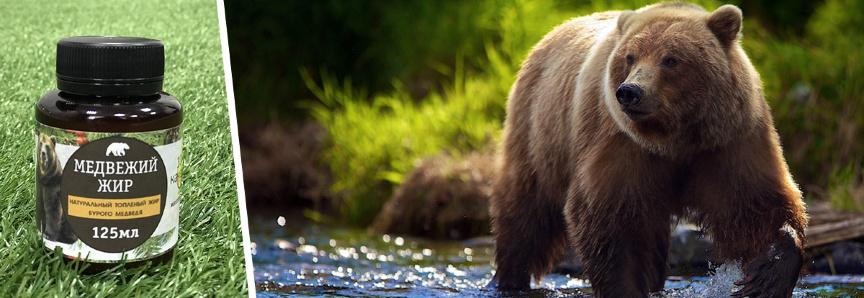 Для чего нужен медвежий жир